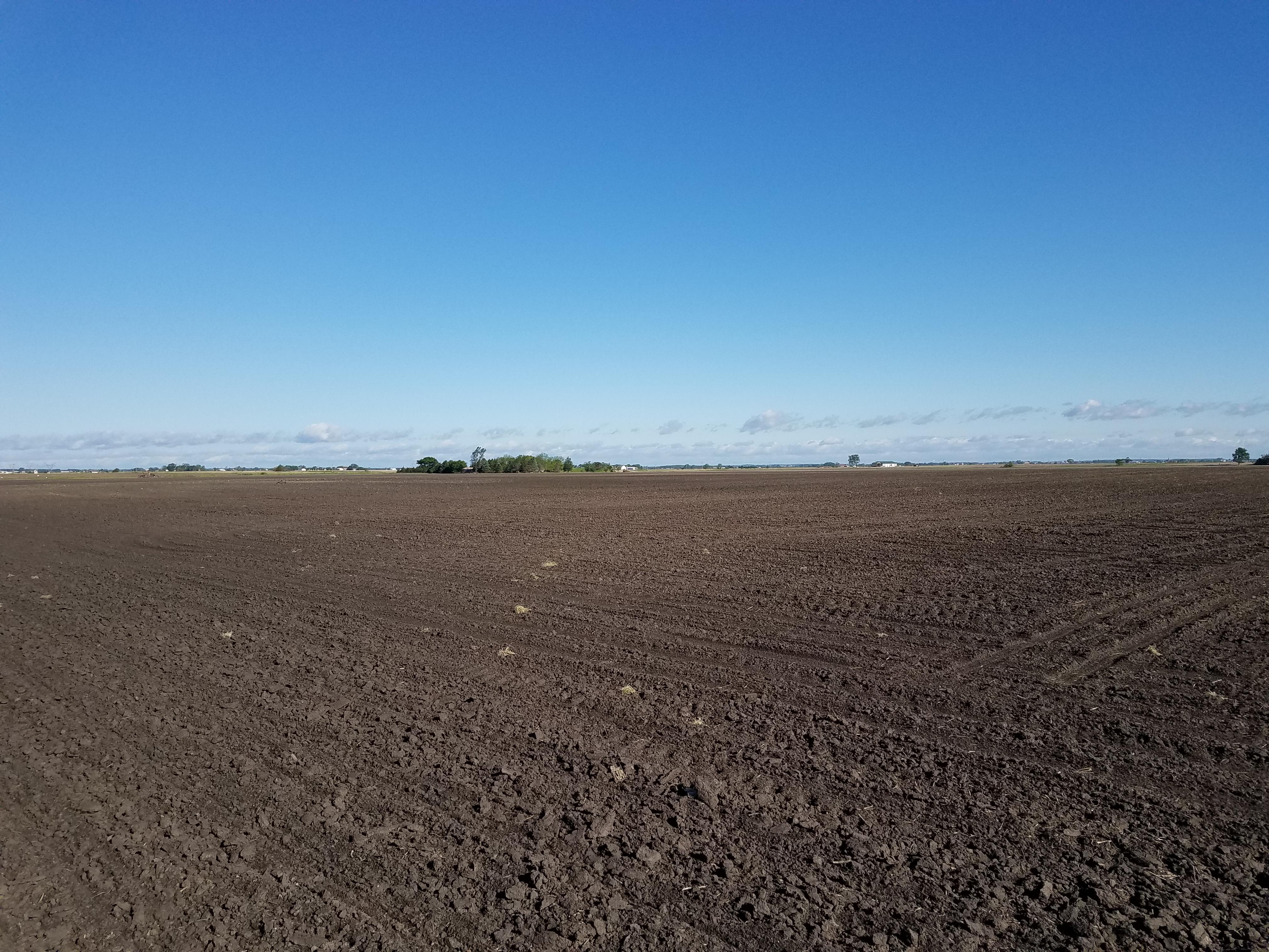 Phebus Mccoy Farm Picture of Field