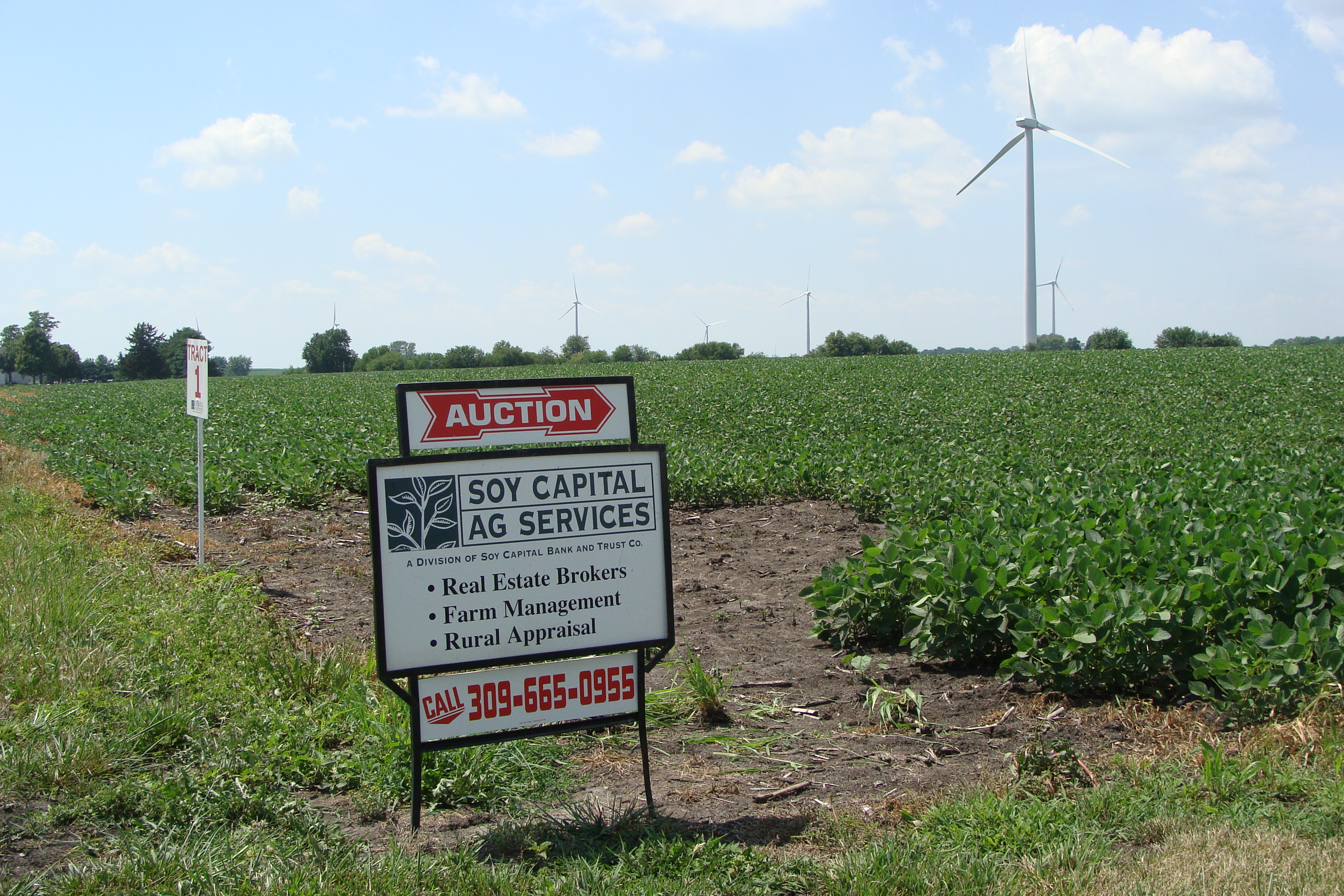 Picture of Mitchell Auction Sign