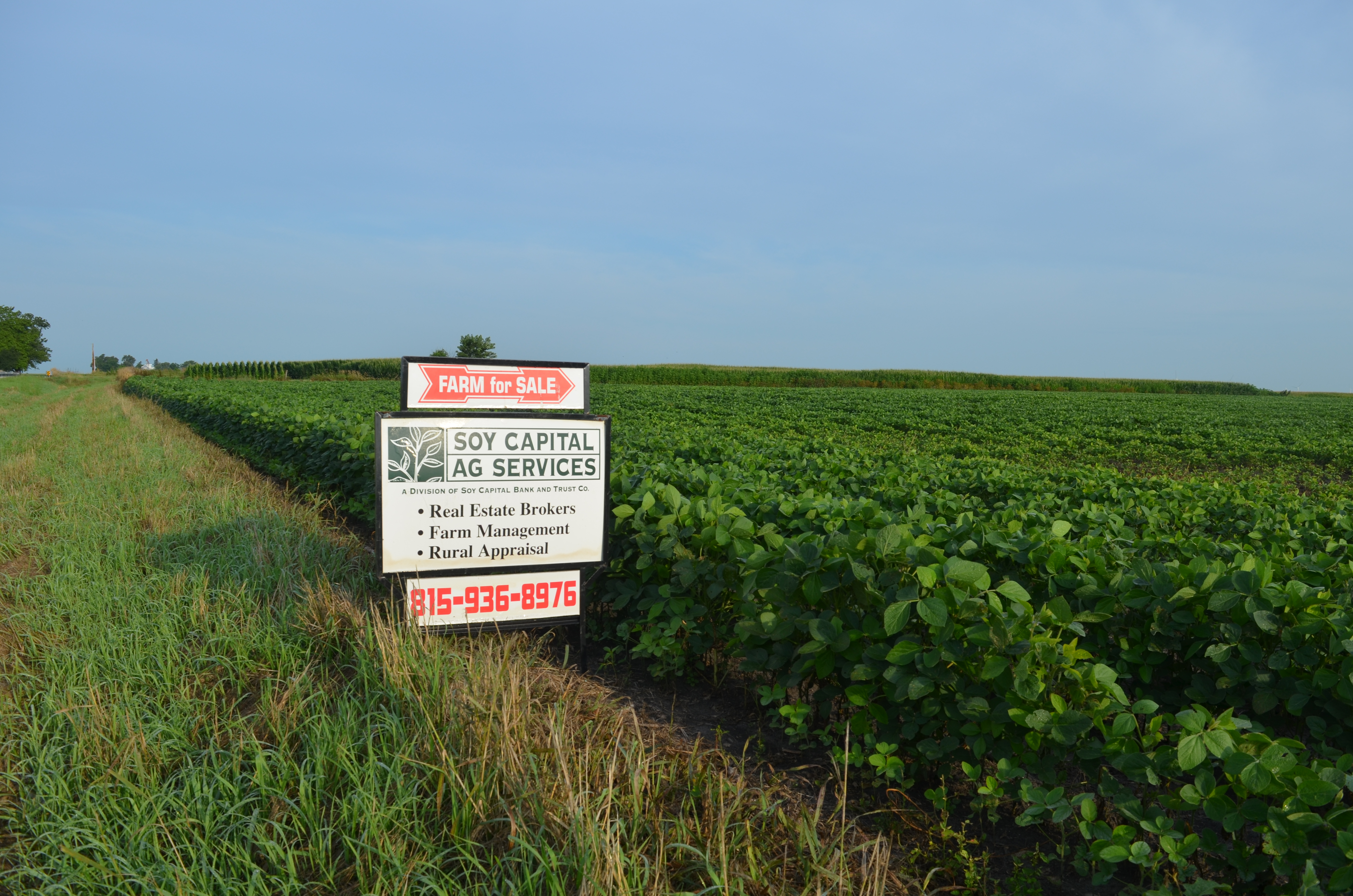 Hendron Farm for Sale Sign (2)