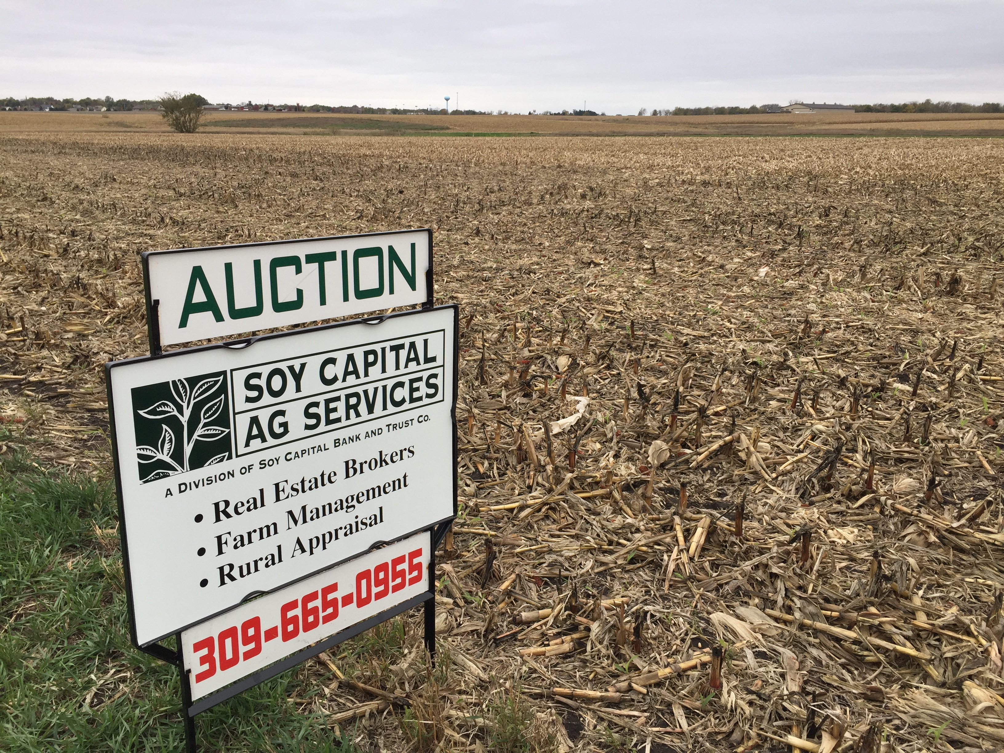Picture of Giannini Farm wth for sale sign