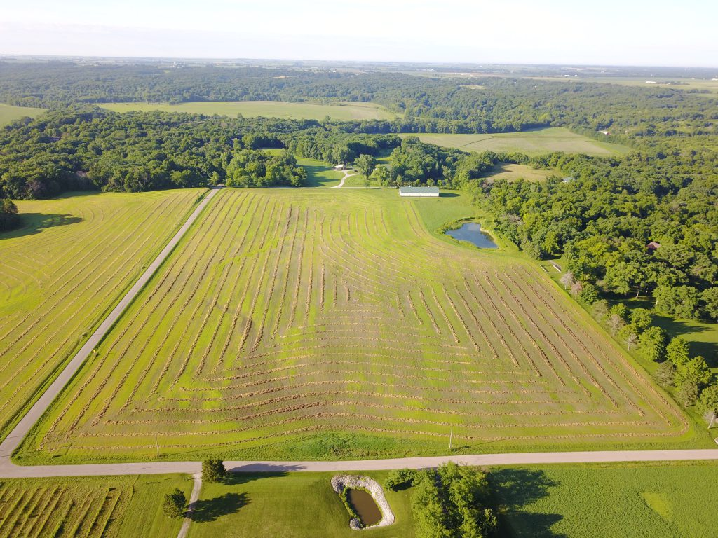 Walnut Grove, LLC Aerial